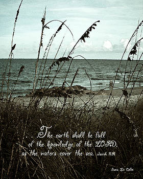 Beach Grass Oats Isaiah 11 by Janis Lee Colon