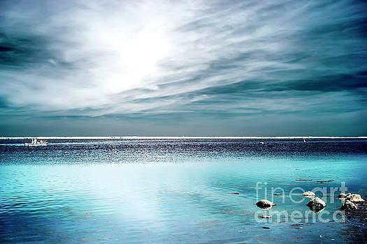John Rizzuto - Beach Haven Bay Infrared at Long Beach Island