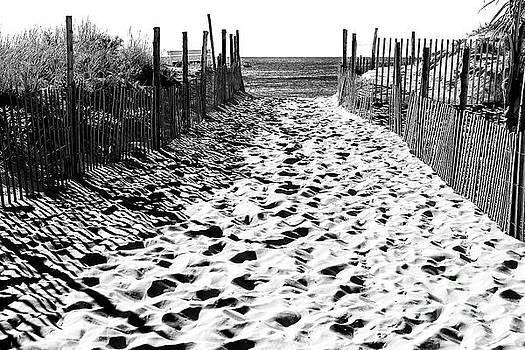 John Rizzuto - Beach Haven Beach Entry 2006