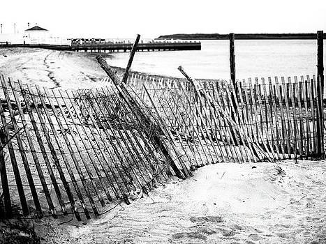 John Rizzuto - Beach Haven Dune Fence on Long Beach Island