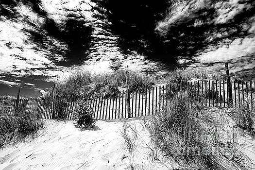 John Rizzuto - Beach Haven Long Beach Island