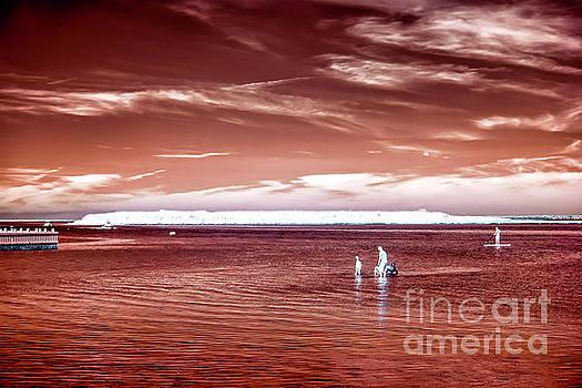 John Rizzuto - Beach Haven Red Infrared