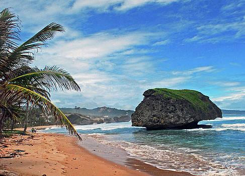 Gary Wonning - Beach hideaway