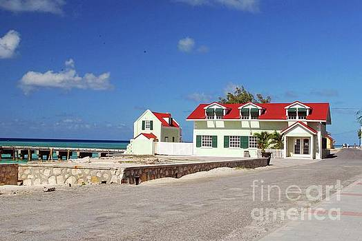 Gary Wonning - Beach House