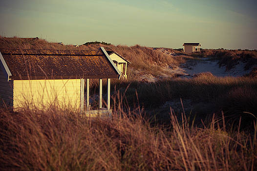 Beach Houses and Dunes by Michael Maximillian Hermansen