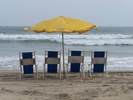 Beach Life by Jeff Moose