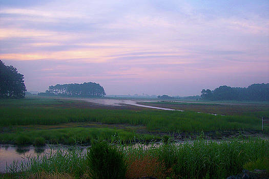 Beach Marsh Sunrise - 14 by Donovan Hubbard