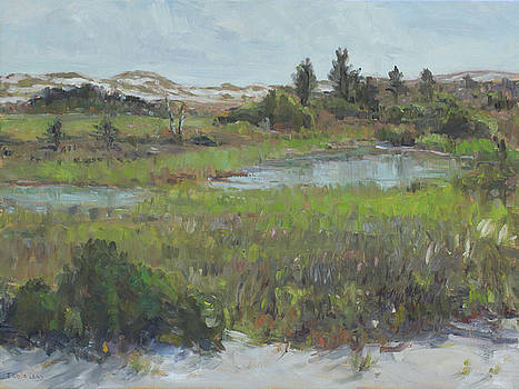 Beach Marsh by Theresa Grillo Laird