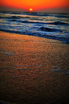 Emily Stauring - Beach of Dreams