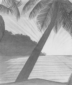 Beach of Palm - Man in the Middle by Peter Griffen