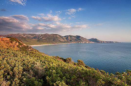 Beach of San Nicolao by Laura Melis