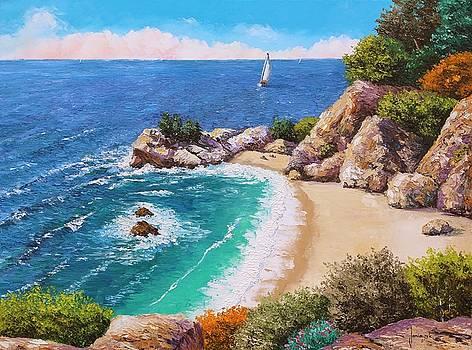 Beach of the cove by Jean-Marc JANIACZYK