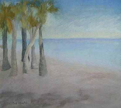 Beach Palms by Gail Wheeler