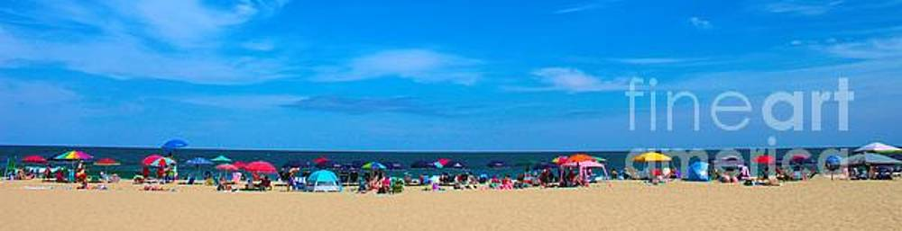 Paulette Thomas - Beach Panoramic