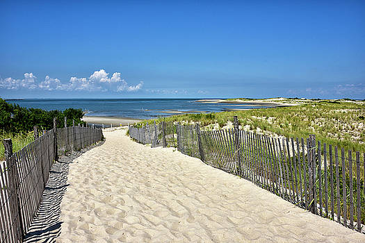 Beach Path at Cape Henlopen State Park - The Point - Delaware by Brendan Reals