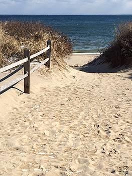 Beach Path by Jim Gillen