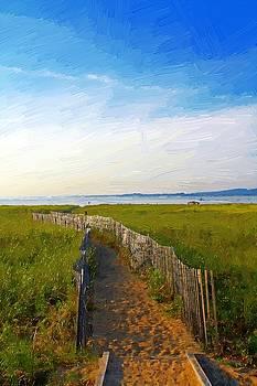 Beach Path by John Ellis