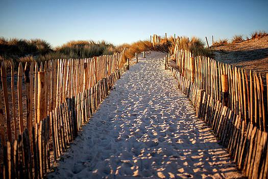 Lorrie Joaus - Beach Path