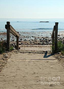 Beach Path by Richard Gibb