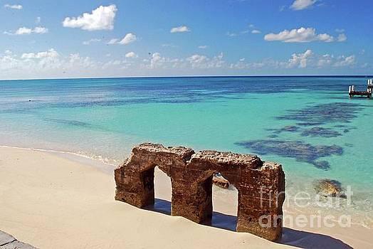 Gary Wonning - Beach Pilon