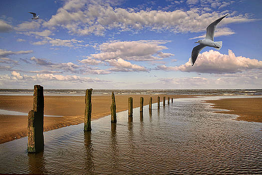 Beach posts by Martin Fry