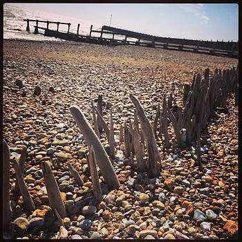 #beach #remains #southcoast by Natalie Anne