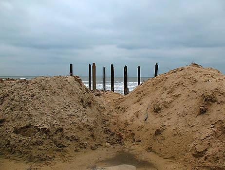 Beach Retreat by Connie Fox
