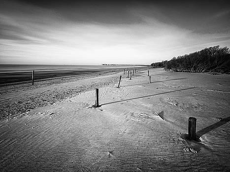 Beach Ruins - Dewees Island, SC by Donnie Whitaker