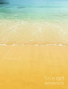 Tim Hester - Beach Sand Background