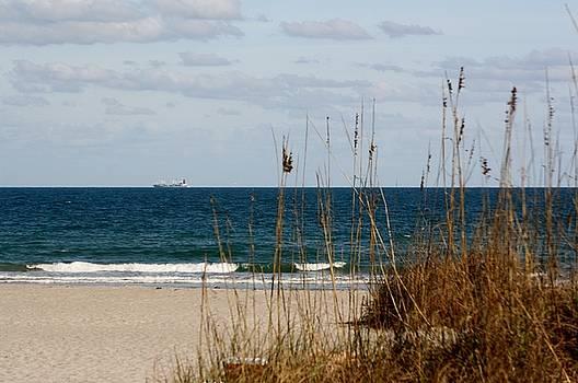 Beach Scene by Cheri Carman