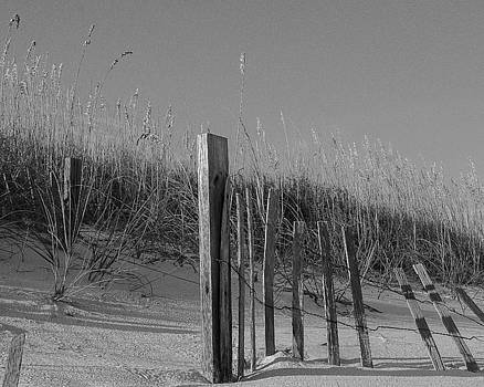 Beach Scene in Black and White by Maria Suhr