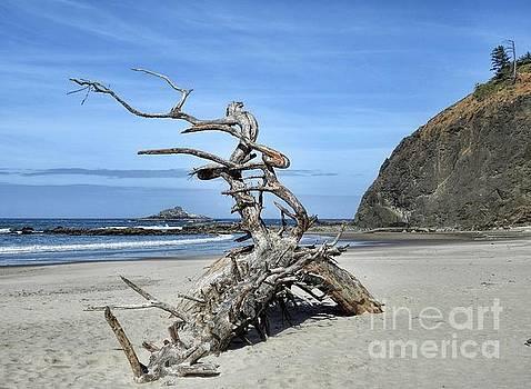 Beach Sculpture by Peggy Hughes