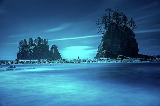 Beach sea stacks with trees by William Freebilly photography