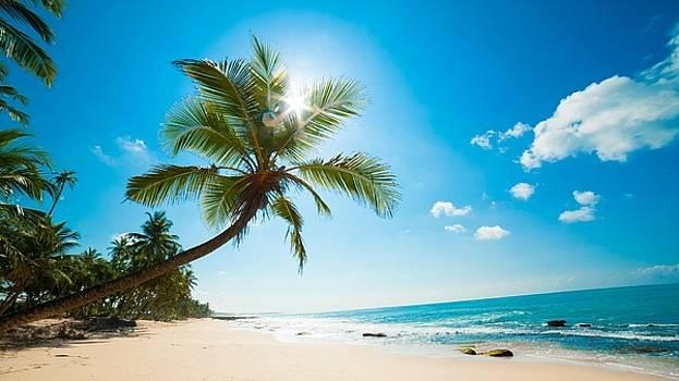 Beach Seen by Luke Lonergan by Luke Lonergan