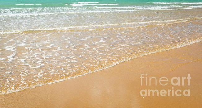 Tim Hester - Beach Shoreline Background