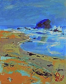 Beach solitude by Walter Fahmy