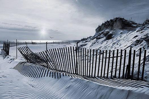 Beach Stripes by Robin-Lee Vieira