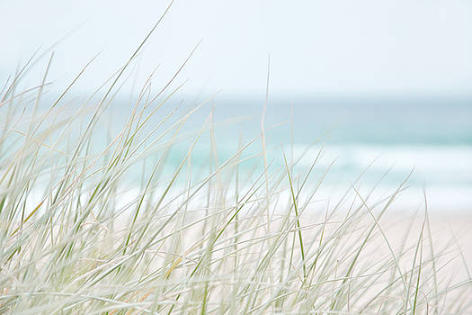 Beach Study #4 by Emma Lucas