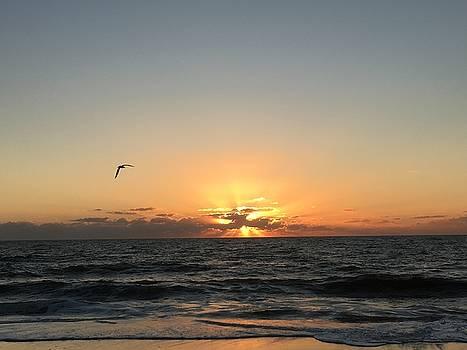 Beach Sunrise by Paul Lavoie