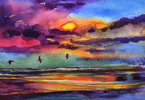 Beach sunrise with Pelicans 7-10-17 by Julianne Felton