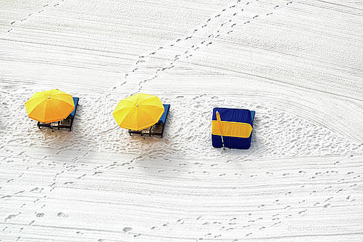 Beach Tracks by Erich Grant