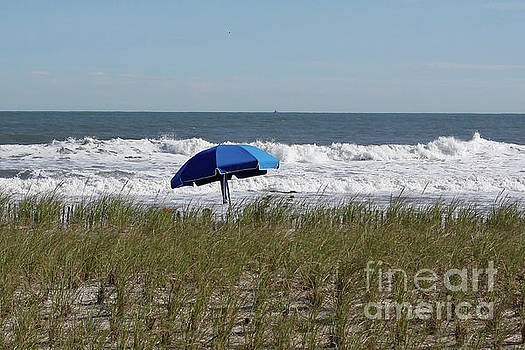 Beach Umbrella by Denise Pohl