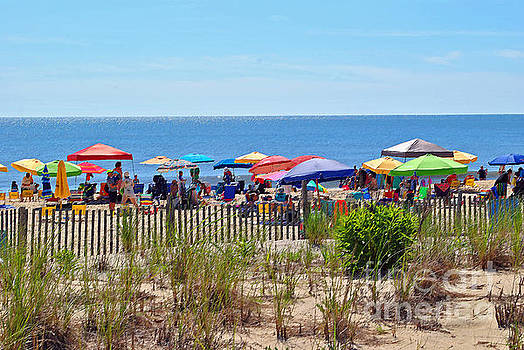 Jost Houk - Beach Umbrella of the Sea