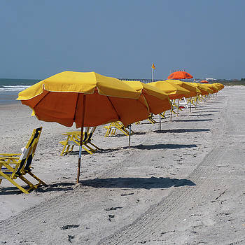 Beach Umbrellas by Amy Jo Garner