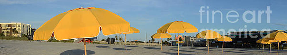 Beach Umbrellas by Timothy OLeary