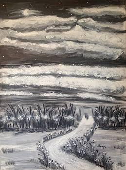 Beach Walk by Diane Pape