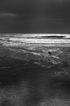Robin Street-Morris - Beach Walker
