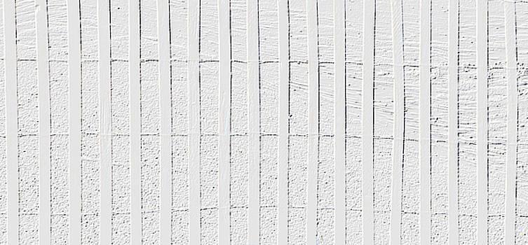 Beach Fence Wallpaper by Charlotte Schafer