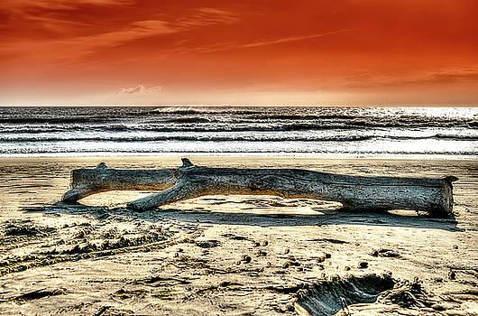 BEACH WITH WOOD TRUNK - SPIAGGIA CON TRONCO IIi by Enrico Pelos