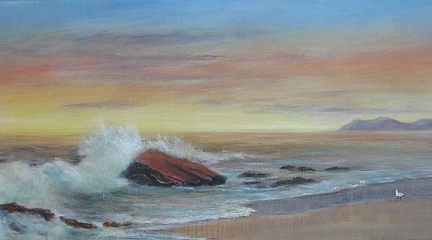 Beachcomber by Rita Palm